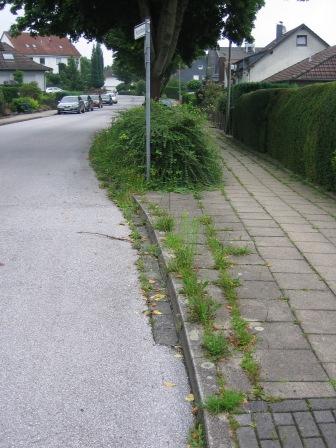 Mozartstraße 1